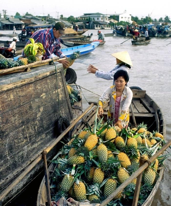 Những vựa trái cây miệt vườn ở Việt Nam