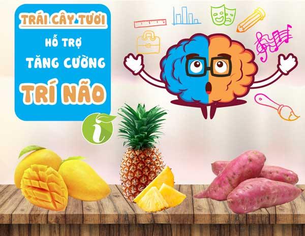 Top 3 loại trái cây có tác dụng tăng cường trí não hiệu quả