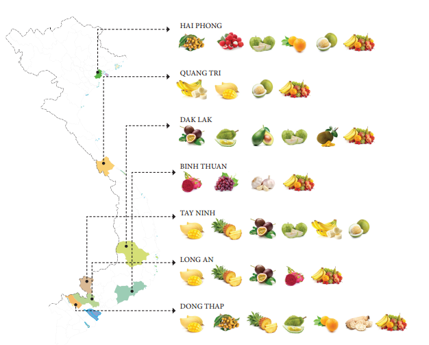 Việt Nam thủ phủ của các loại trái cây tươi, ngon và bổ dưỡng