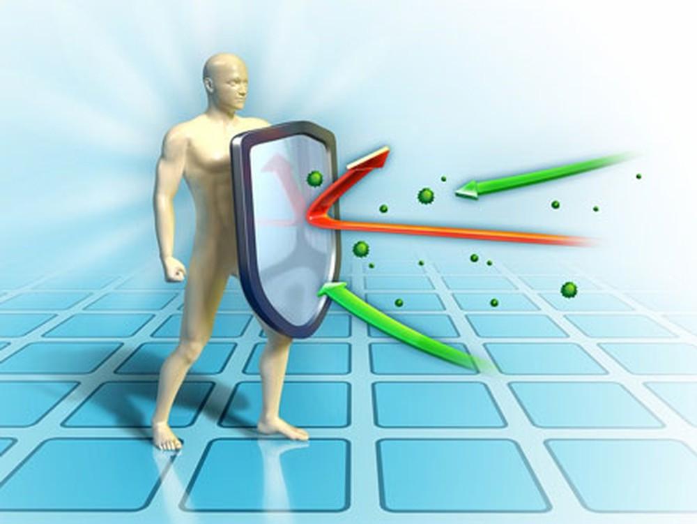Hệ miễn dịch của cơ thể