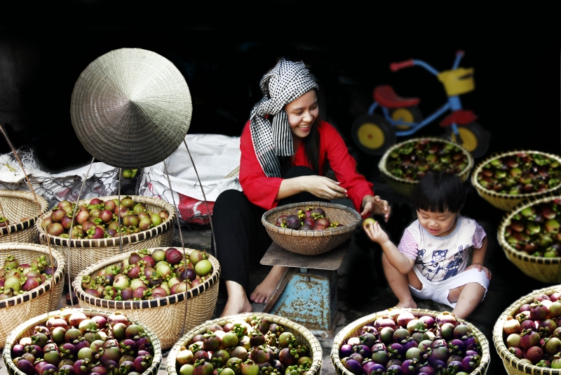 Măng cụt Lái Thiêu-một trong 50 loại trái cây đặc sản nổi tiếng của Việt Nam