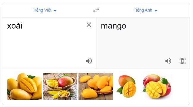 google dịch trái xoài tiếng anh và việt