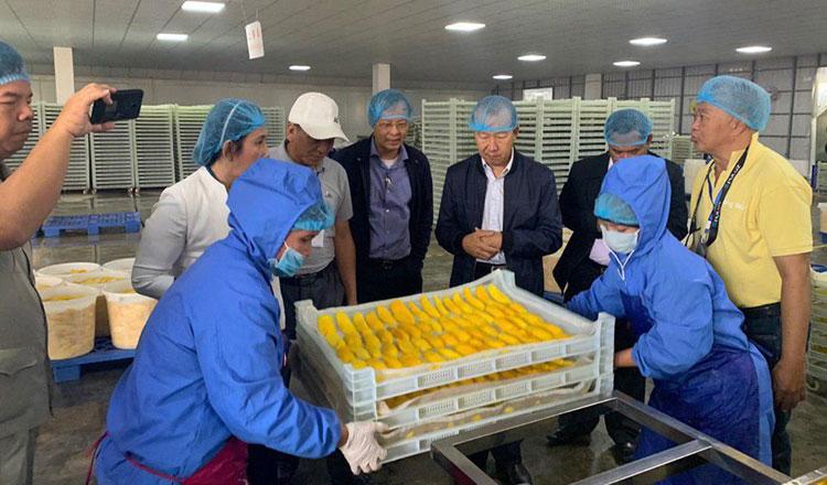 Công ty sản xuất trái cây sấy khô