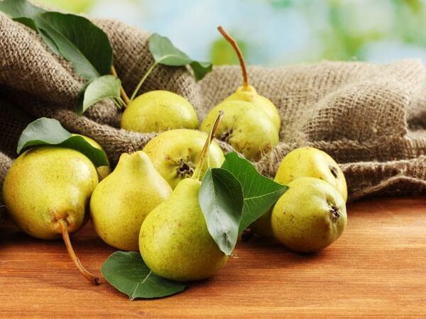 quả lê 20 loại trái cây trị bệnh mà bạn không ngờ tới