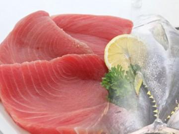 đặc sản tuy hòa cá ngừ đại dương