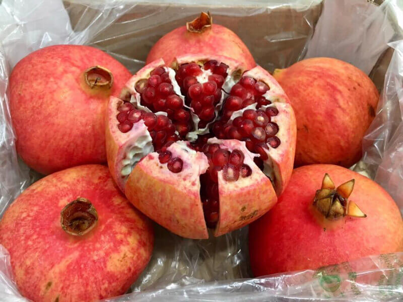Trái Cây Nhập Khẩu Fresta