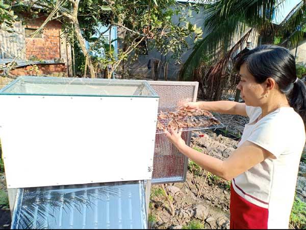 Cô giáo Thảo tự chế máy sấy nông sản bằng năng lượng mặt trời