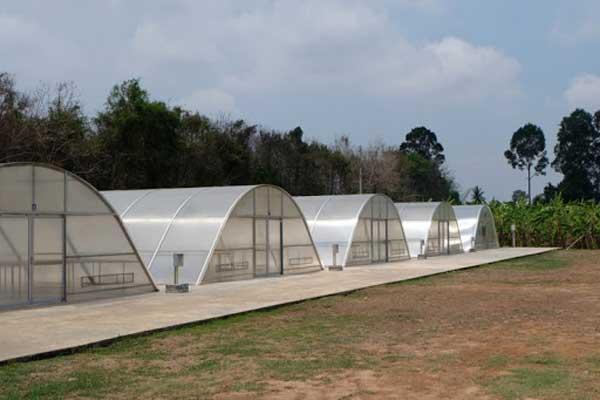 Các mô hình nhà kính phơi nông sản công nghệ cao